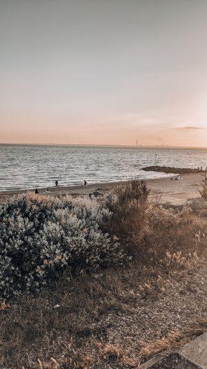 evening beach walk